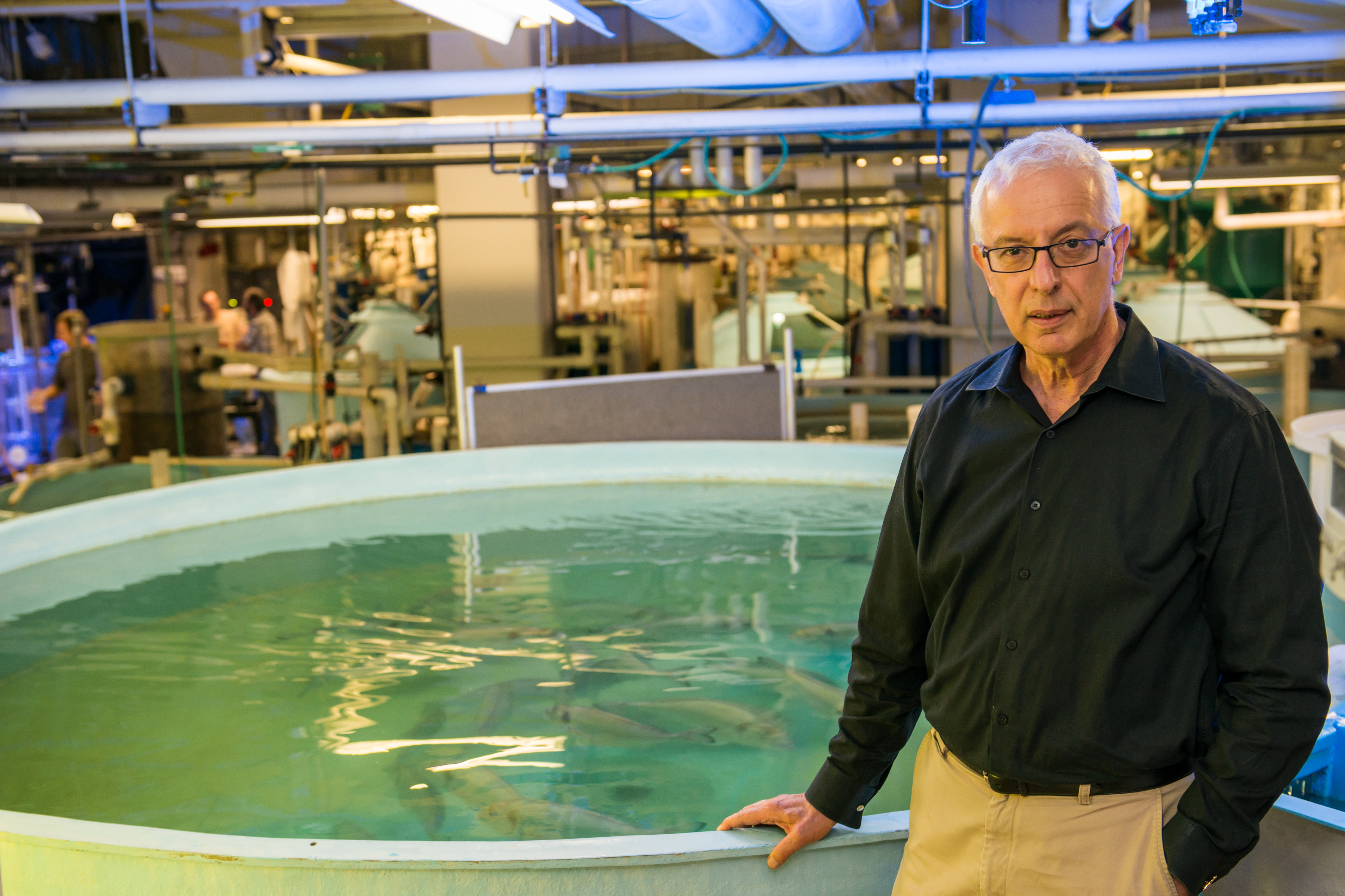 Dr. Zohar stands with his hand resting on a large tank of fish