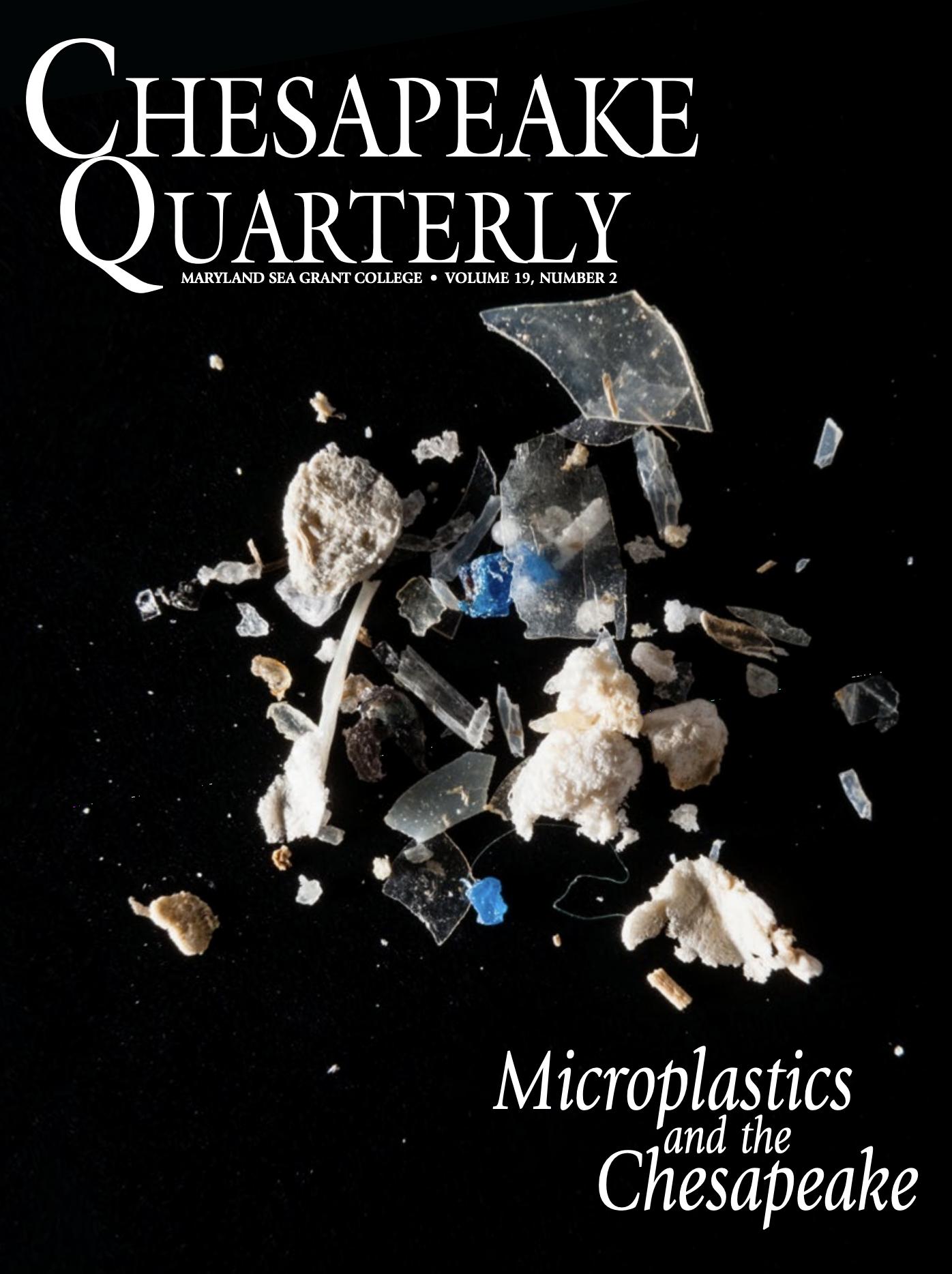 cover of Chesapeake Quarterly