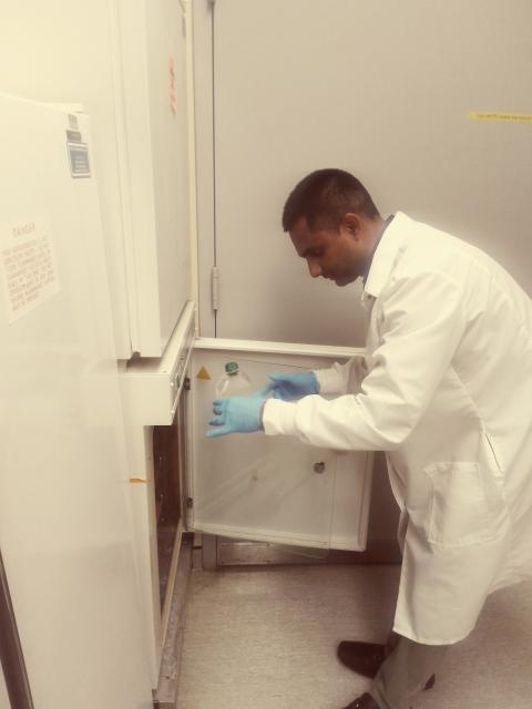 Muddassar Iqbal, wearing a lab coat and gloves, puts a sample into a refrigerator