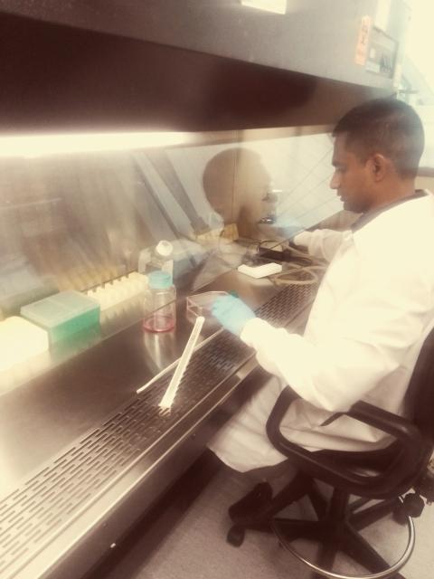 Muddassar Iqbal in a lab coat sits at a fume hood