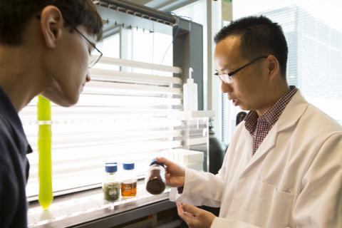 Yantao Li shows a student some brown algae