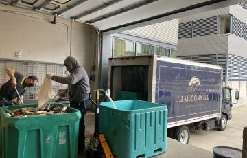 Two men transfer fish to a JJ McDonnell Truck