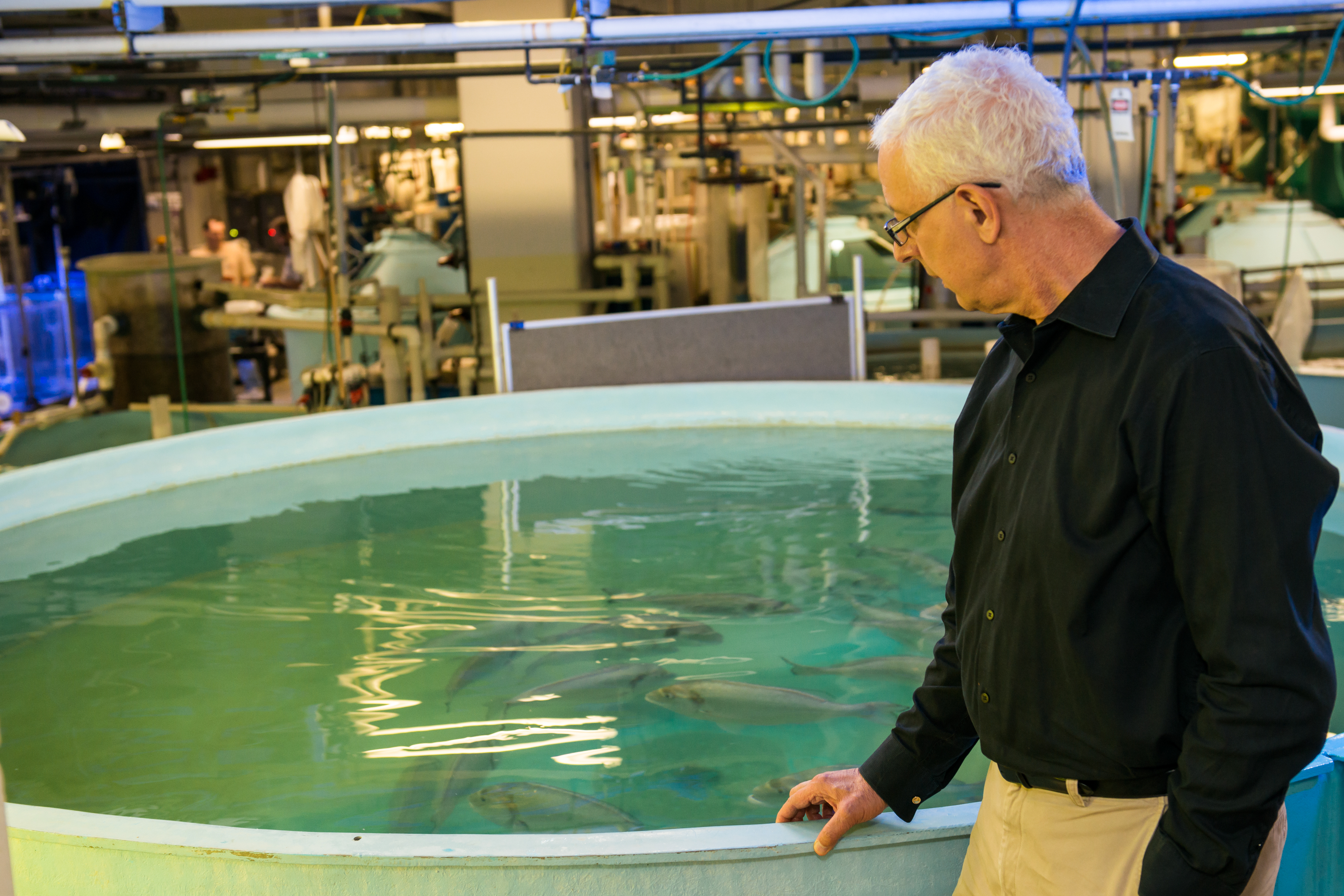 Dr. Zohar stands with his hand on a large round tank of fish